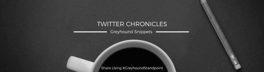 banner_twitter_chronicles